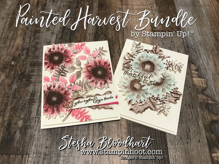 It's Day 3 of the Painted Harvest Bundle Sneak Peek. More thank you cards with non-traditional sunflower colors that pop! Details at Stampin' Hoot!