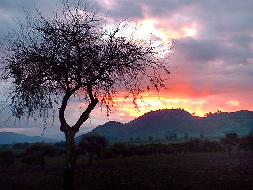 Atardecer en Barba Rubia (Curico - Chile) | Flickr - Photo Sharing!