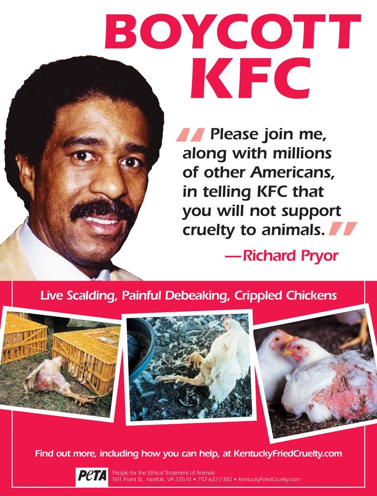 a campaign against kfc The sky is falling, and kfc is trying to make chicken salad out of chicken scratch it's is an odd move the idea that an actor change will make the ad campaign any easier to swallow is nonsense.