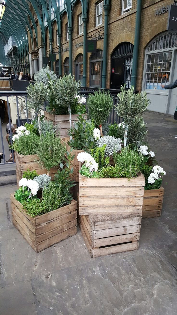 Ideas for apple crate planters at Covent Garden