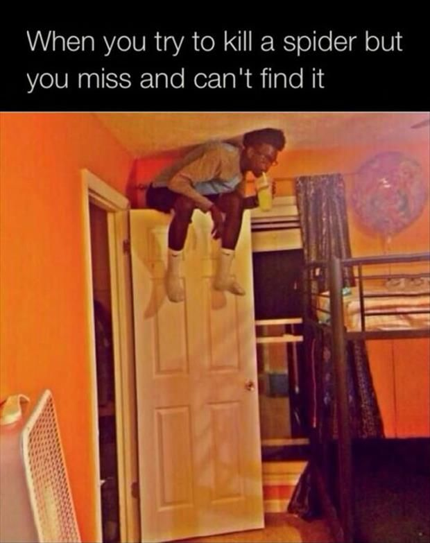 Best Funny Pictures Ideas On Pinterest Funny Meme Pictures - 28 hilarious random acts of laziness 4 cracked me up