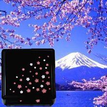 Portatile giapponese sakura fiore sushi bento box lunch box ciotola contenitore per alimenti quadrato nero(China (Mainland))