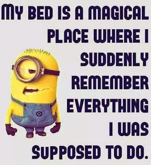 Funny Quotes Pictures