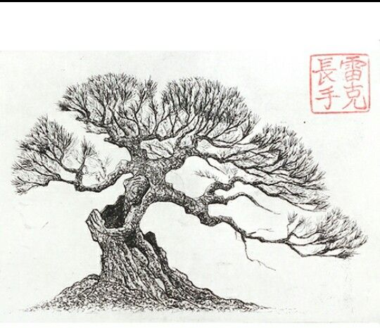13 best bonsai art images on pinterest