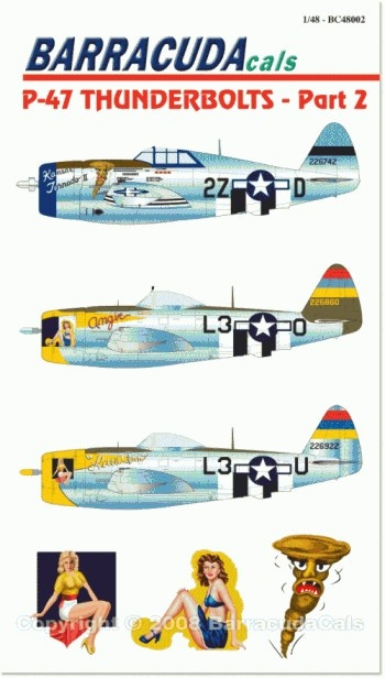 P-47 Thunderbolts - Part 2 - 1/48 Scale