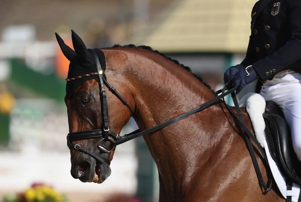 Michael Jung of Germany riding Sam Fbw competes in the Individual Dressage event on Day 1 of the Rio 2016 Olympic Games at the Olympic Equestrian Centre on August 6, 2016 in Rio de Janeiro, Brazil. - Equestrian - Olympics: Day 1