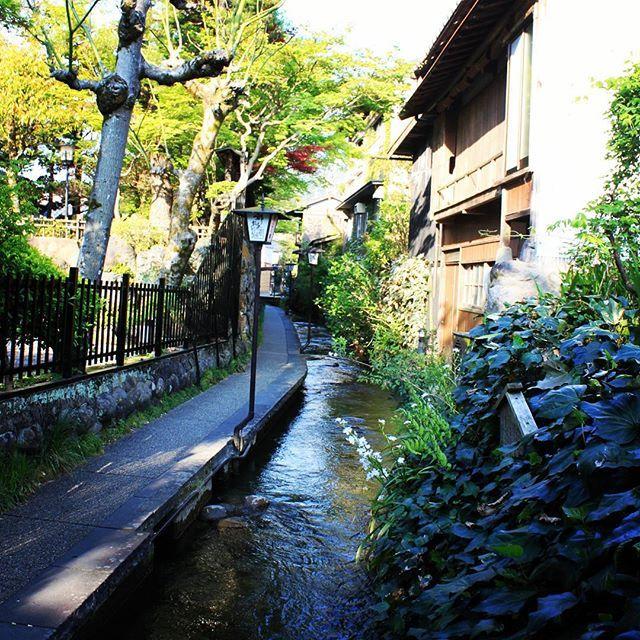"""@yokkie7700's photo: """"郡上八幡の街並み"""""""