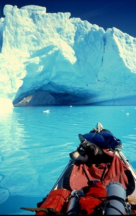 Kim Hafez - Nomade du Grand Nord <3