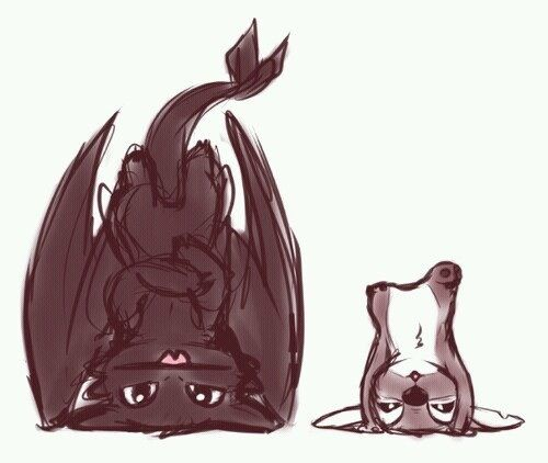 I will never not post stitch and toothless! They would be best friends!