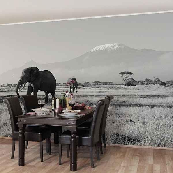 37 besten Tapeten Bilder auf Pinterest Blume, Bubble und Einfach - tapeten wohnzimmer braun