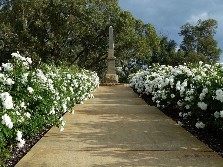 WWI memorial Gosnells - Google Search