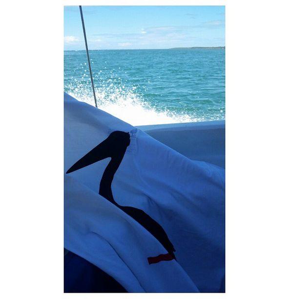 Combinação perfeita.. Perfect match.. www.cayresco.com  #cayreslifestyle #cayresdeluxe #cayresco #surfingthewavecalledlife #dowhatyouloveanddoitalways #pelicanocayres #lifestyle #cool #dapper #goodlife #dope #pelican #sea #instacool #instastyle #nature #naturelovers #mens #style #menwithstyle #menswear #menstyle #mensstyle #menclothing #mensfashion #modaparahomens #joaopteles
