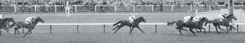 Rising Fast 1954 Melbourne Cup