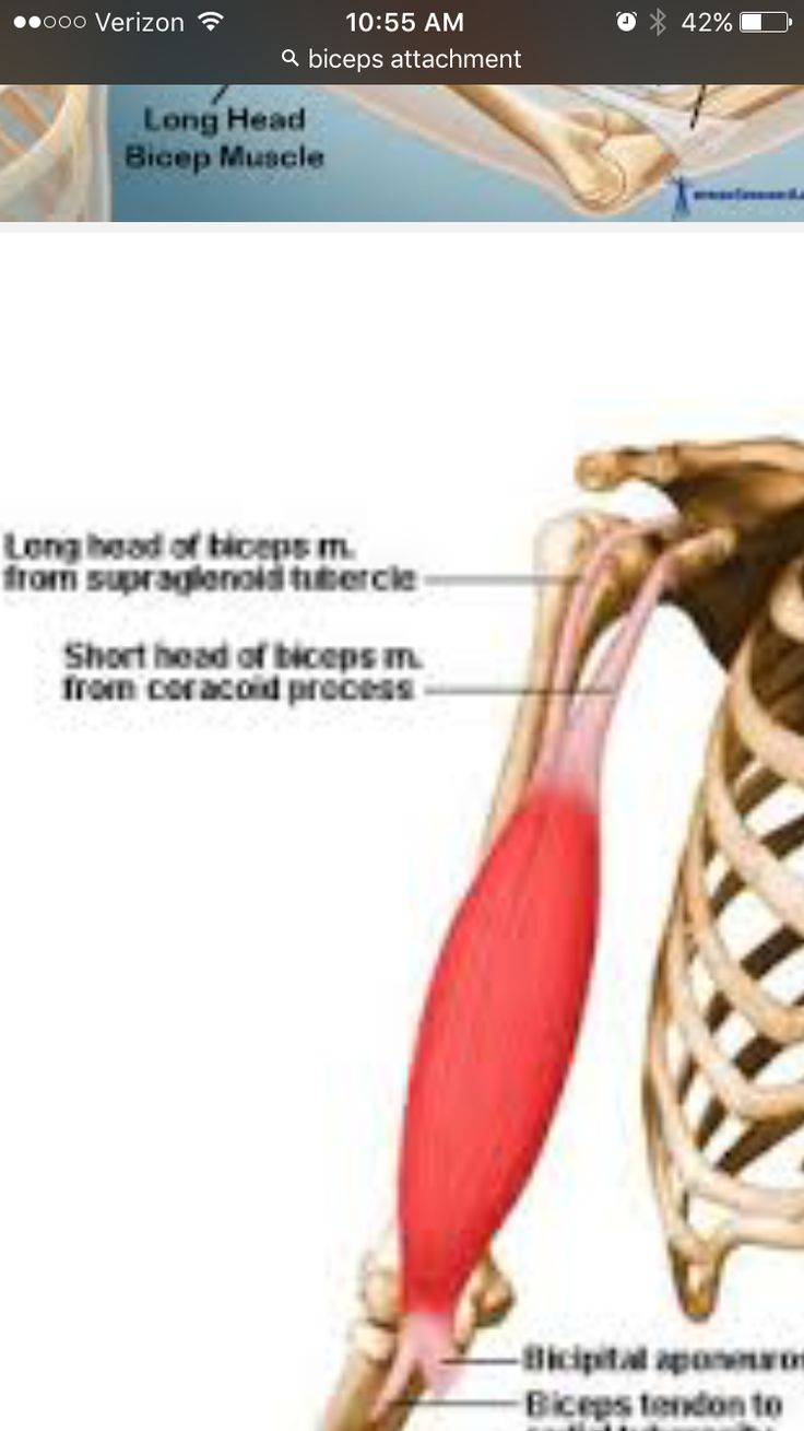 Rotator Cuff Injury From Sleeping Wrong