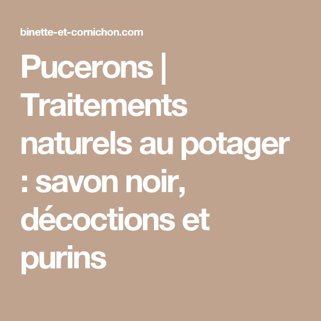 best 20+ savon noir pucerons ideas on pinterest | insecticide