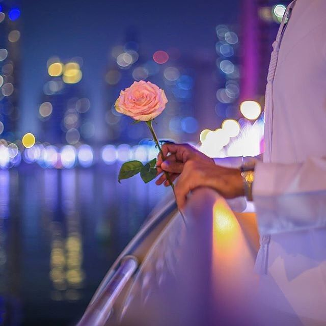 نت حلمي يوم كان الحلم حي كنت ابيك بـ واقعي طول العمر Pilot Sulta Art Inspiration Flowers Beauty
