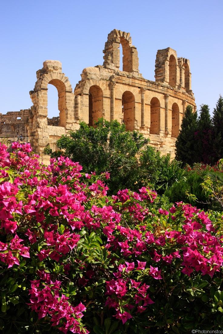 El Djem, Tunisie - Voyage en Tunisie avec Boite A Voyages http://www.boiteavoyages.com/search.php?destination=TUNISIE