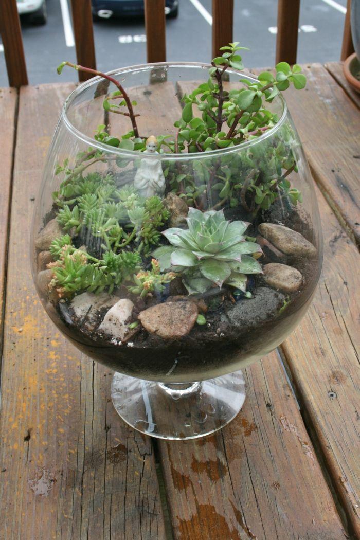 Sukkulenten Im Glas Im Blickfang Kreative Deko Ideen Mit Pflanzen Sukkulenten Im Glas Kostlichkeiten Im Glas Zimmerpflanzen