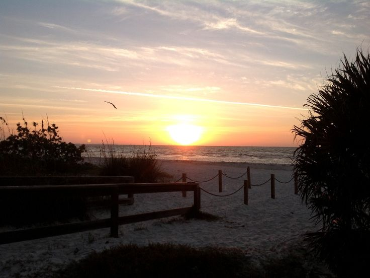 82 best stay at coquina beach 1 d sanibel images on pinterest