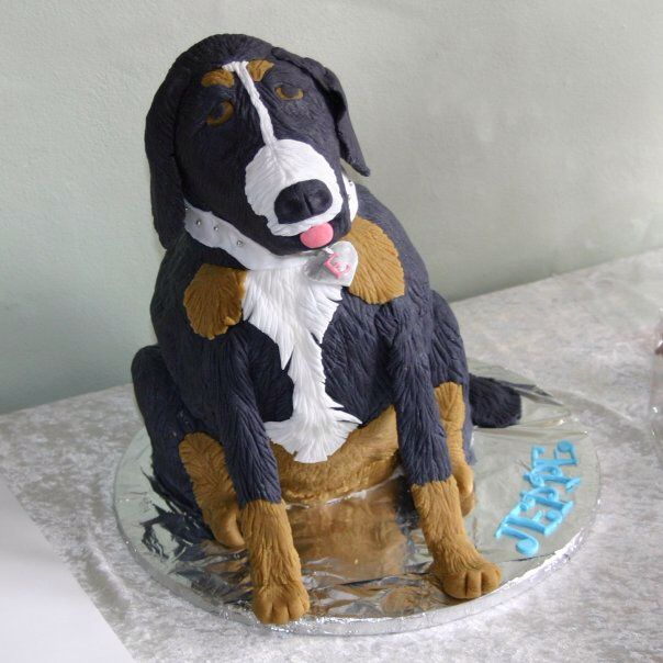 Dog cake. Made for our friend's son who had konfirmation.