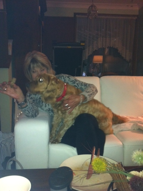 ♥~...♥♥♥...~♥Special Dog, Marley♥~...♥♥♥...~♥