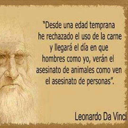 Leonado Da Vinci vegetariano