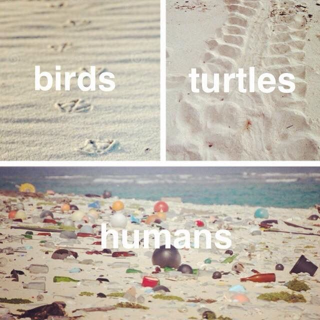 Save the beaches. Save the oceans. Save the planet.