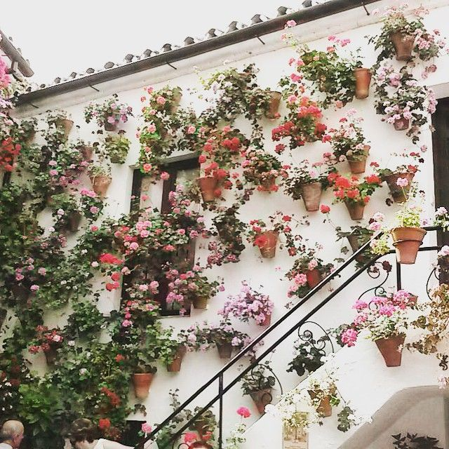 Floral wall. Gorgeous!