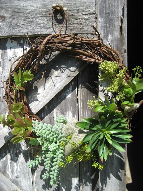 Succulent wreath ~ I would make this a living wreath. :o)