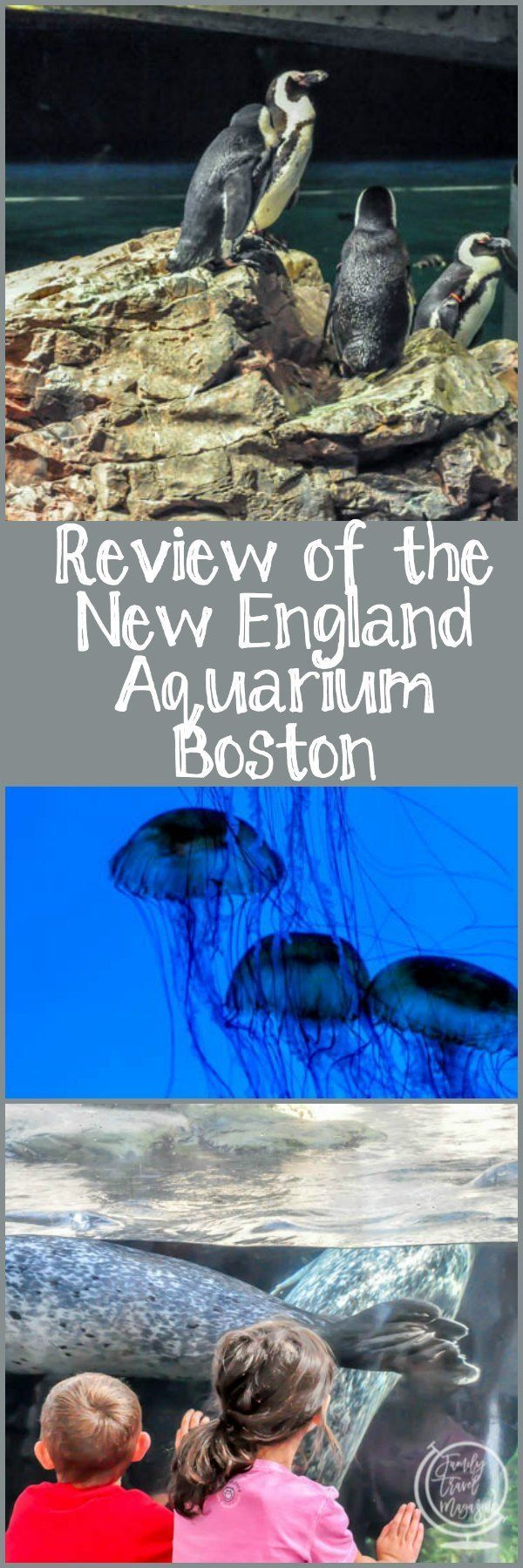 Review of the New England Aquarium Boston, including the New England Aquarium IMAX theater and the giant ocean tank.