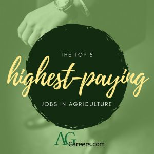 Contrary to stereotypes, agriculture is brimming with well-compensated positions. This blog post lists the highest-paying jobs in agriculture.
