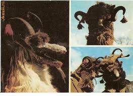 Capra (the goat)    traditional romanian masks -
