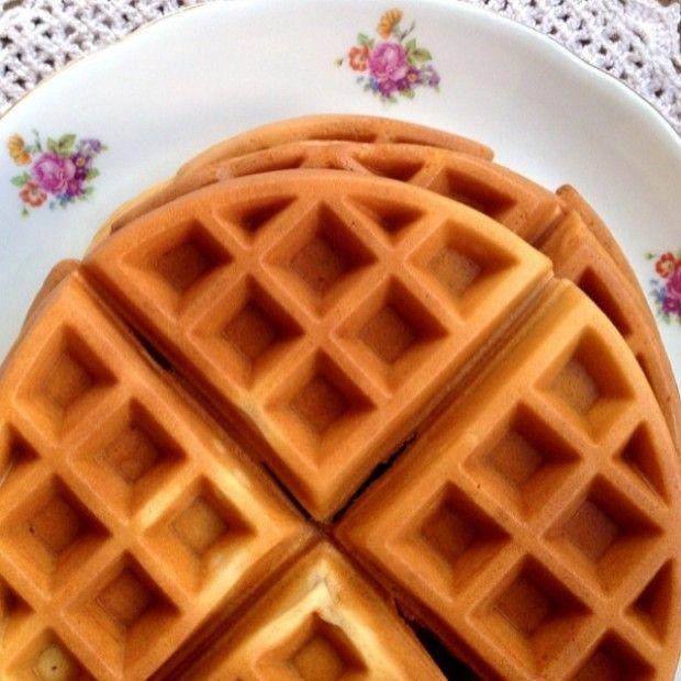 Santa Dieta | Porque aqui não tem milagre! » Arquivos » Receita de Waffle sem…