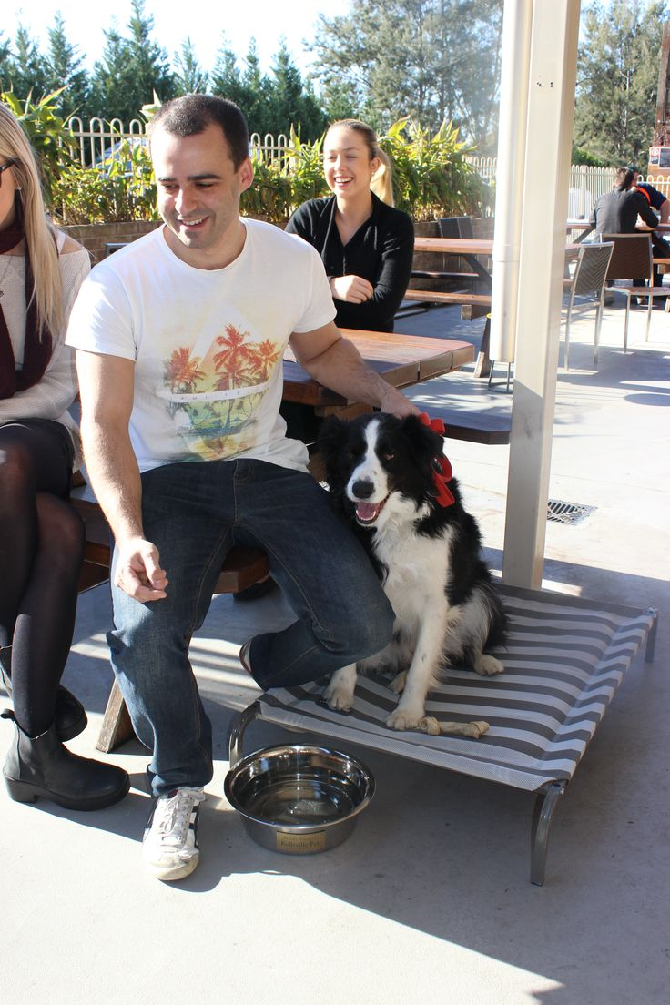 Happy Customers and happy pets @ The Australian Hotel and Brewery