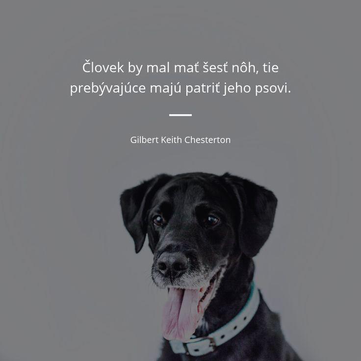 Človek by mal mať šesť nôh, tie prebývajúce majú patriť jeho psovi. - Gilbert Keith Chesterton #psi