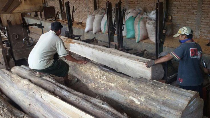 Saw milling 2 meter long 40 cm diameter teak wood. Very expensive raw material ☺