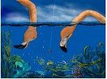 scufundari...in ocean sau acvariu...:))))