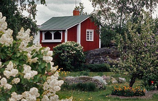 Tässä on kuva kauniista kesämökin pihasta. Järvi-Suomessa on hyvin paljon erilaisia kesämökkejä. Ja se on suosittua seutua. Kirjoittanut Tiltu.