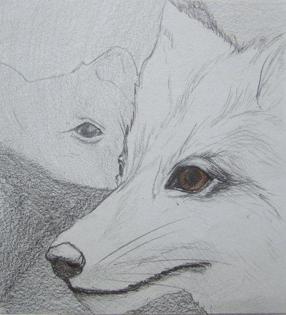 Original grey fox drawing animal illustration by Artbrushing