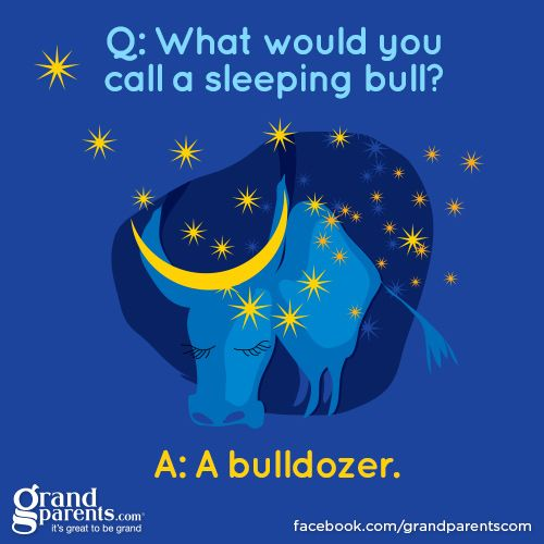 What Do You Call A Sleeping Bull A Bulldozer Totally Hilarious  Age Appropriate Kids Joke