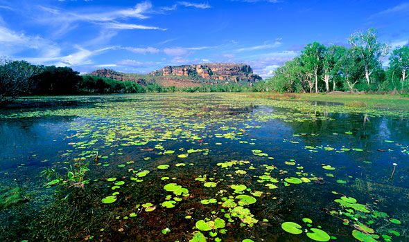 Drive the top end... through Kakadu National Park in the Northern Territory, Australia