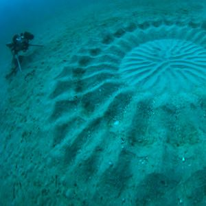 At a depth of nearly 100 feet, what could possibly explain these radially-symmetrical patterns appearing on the ocean floor off the coast of Japan?