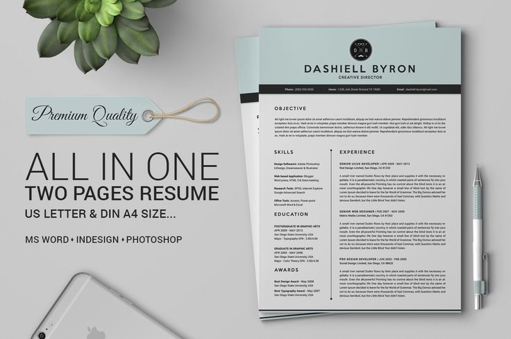 All in One Two Pages Resume Pack by SNIPESCIENTIST on @creativemarket