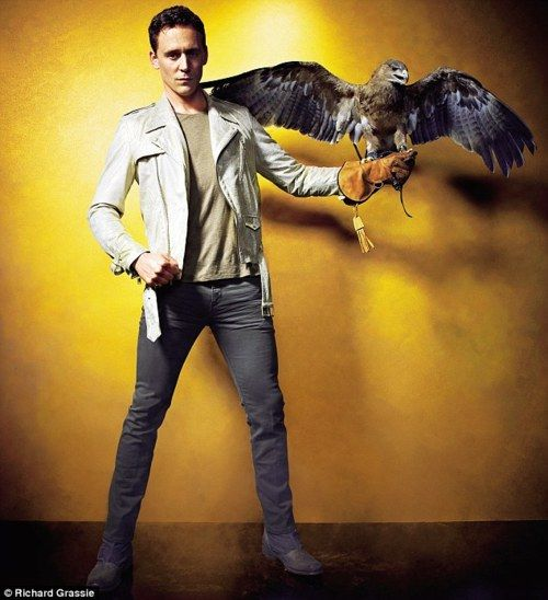 there are very few people who can still look good while holding a fucking falcon.and that person is tom hiddleston.sexy