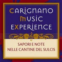 carignano music experience 2013 www.lestradedelvino.com