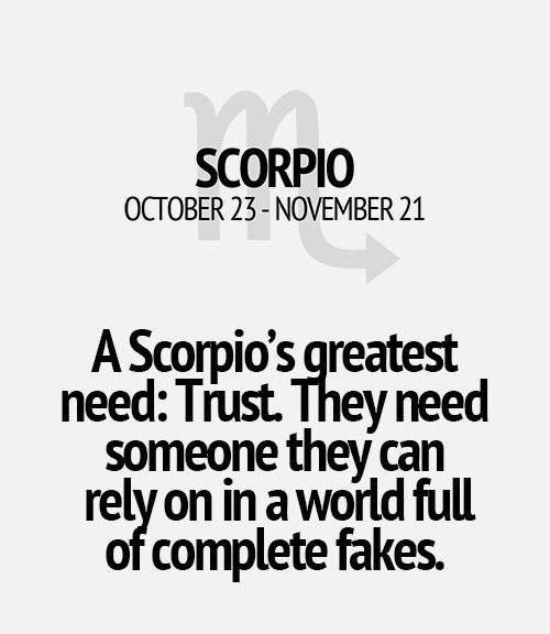 Awesome Scorpio Season, Zodiac, Scorpio Quotes, Scorpio Woman, Card Reading, Tarot  Cards, Horoscopes, Trust, Signs