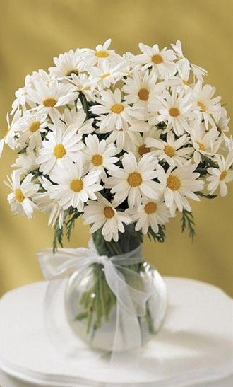 daisy centerpieces.