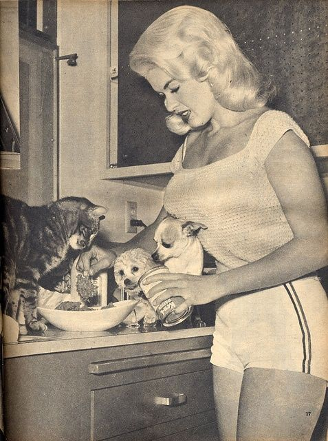 Jayne Mansfield, feeding her cat and small dogs.