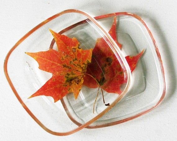 leaves-in-resin coasters or...put on cheap  stone tiles from Home Depot.