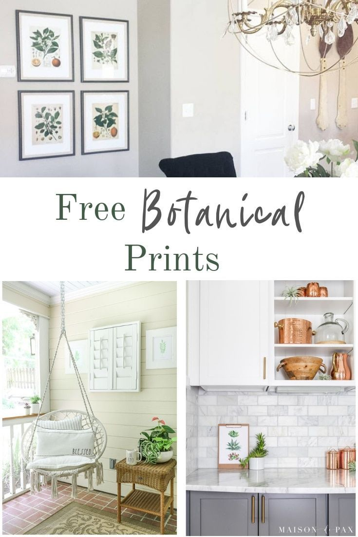 Free Printable Botanical Prints That Will Go Perfect In Your Farmhouse Kitchen Wall Art Diy Trendy